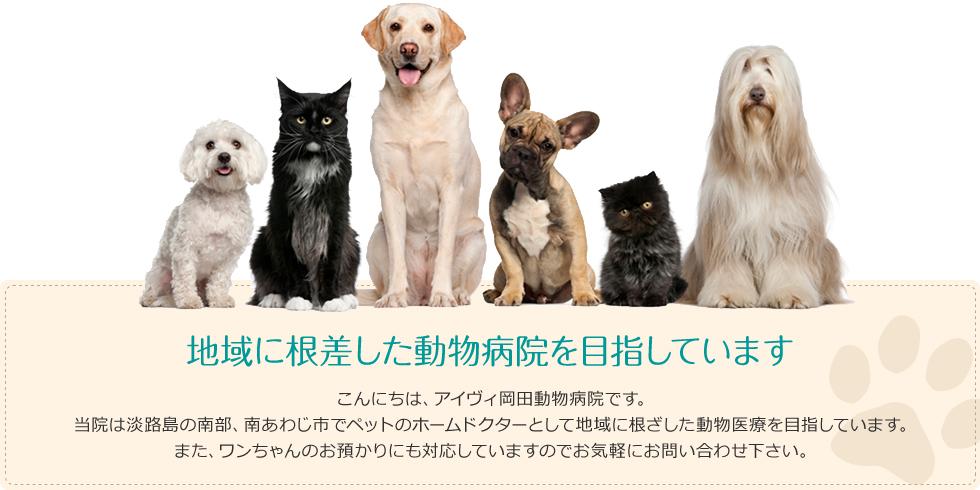 地域に根ざした動物医療を目指しています
