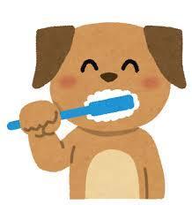 歯の健康に気をつけましょう!!!